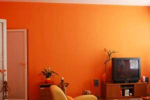 Petrovo malování, design, malba interiérů 12