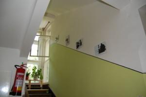 Petrovo malování, design, malba interiérů  32